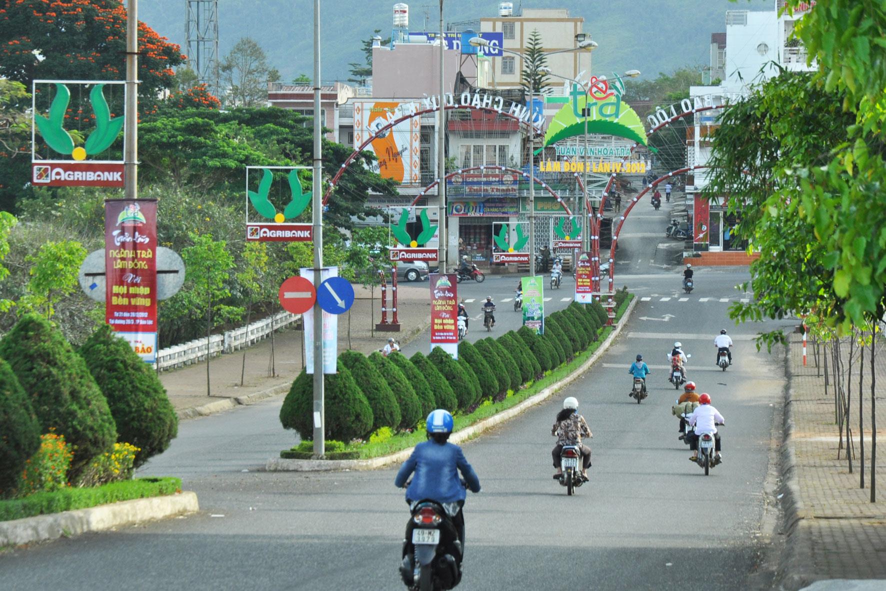 Bất động sản Bảo Lộc, Lâm Đồng - 2
